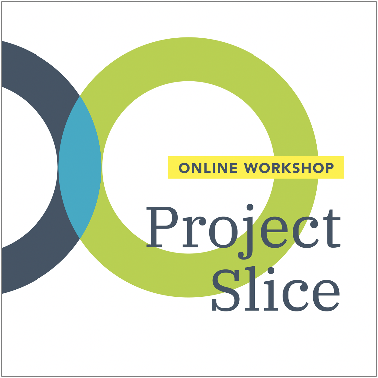 Project Slice graphic