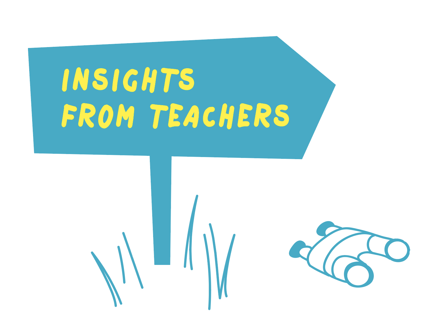 Insights from teachers