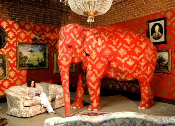 elephant in a living room