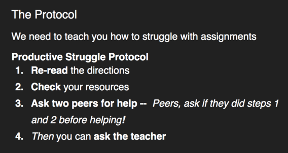 steps in a protocol for productive Struggles
