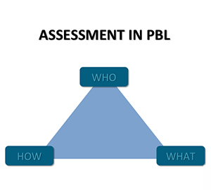 who, what, how, chart for assessing pal