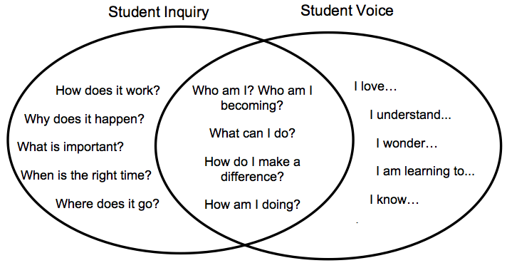 graphs of student inquiry and student voice overlapping