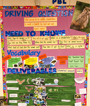 classroom bulletin board with driving question